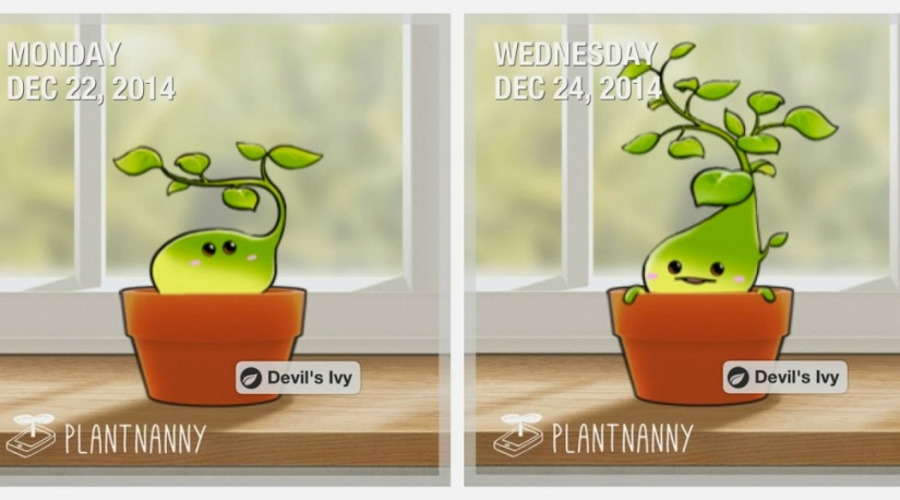 plant-nanny-featured